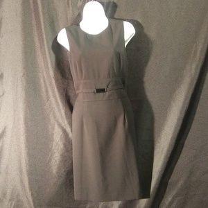 Calvin Klein Fitted Sleevless Dress